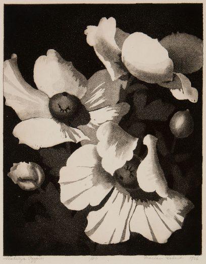 Marian Hebert – Matilija Poppies