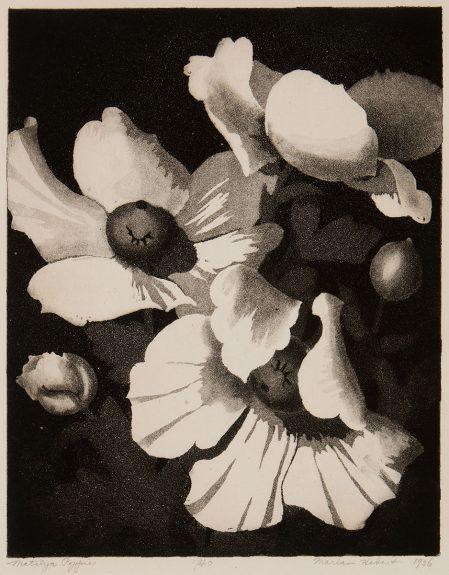 Marian Hebert - Matilija Poppies