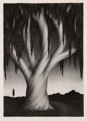 Alexander P. Fleming - Eucalyptus