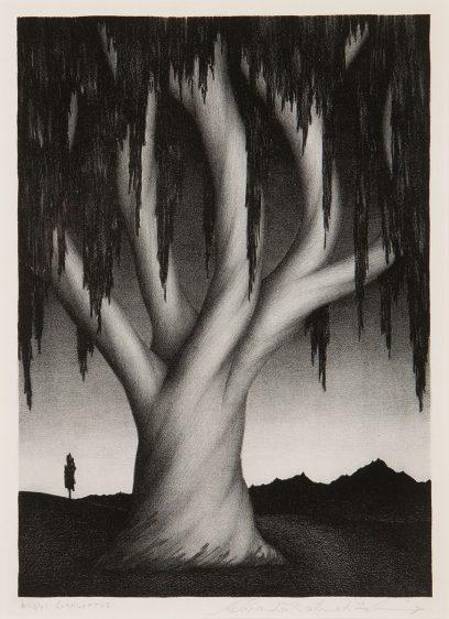 Alexander P. Fleming – Eucalyptus