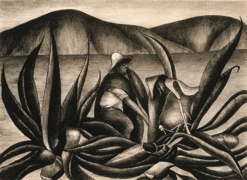 Henrietta Shore - Drawing Pulque Ca. 1930